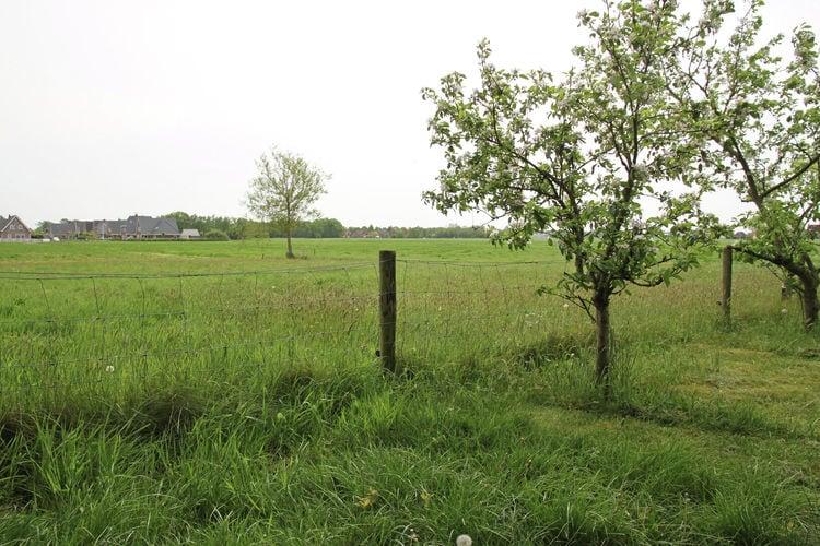 Ferienhaus 't Haske (59990), Sintjohannesga, , , Niederlande, Bild 27