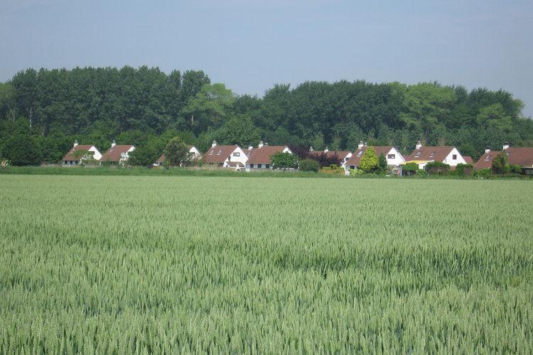 Ferienhaus Duinendaele (60460), Adinkerke, Westflandern, Flandern, Belgien, Bild 12