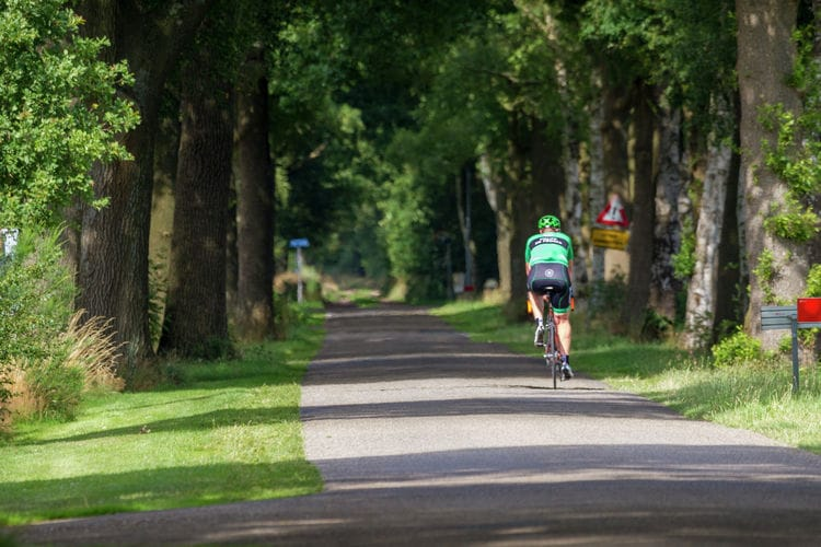 Ferienhaus Vakantiepark Sallandshoeve (256988), Nieuw Heeten, , Overijssel, Niederlande, Bild 33