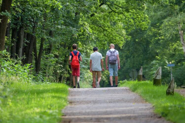 Ferienhaus Vakantiepark Sallandshoeve (256988), Nieuw Heeten, , Overijssel, Niederlande, Bild 32
