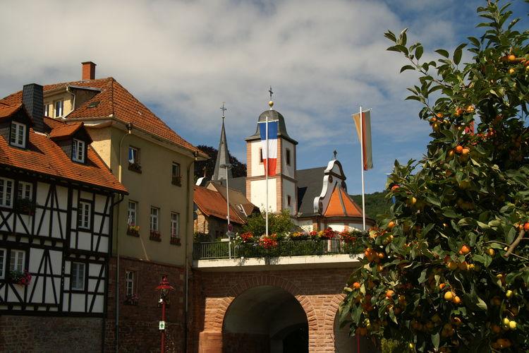 Ferienhaus Feriendorf Waldbrunn (255330), Waldbrunn, Odenwald (Baden-Württemberg), Baden-Württemberg, Deutschland, Bild 33
