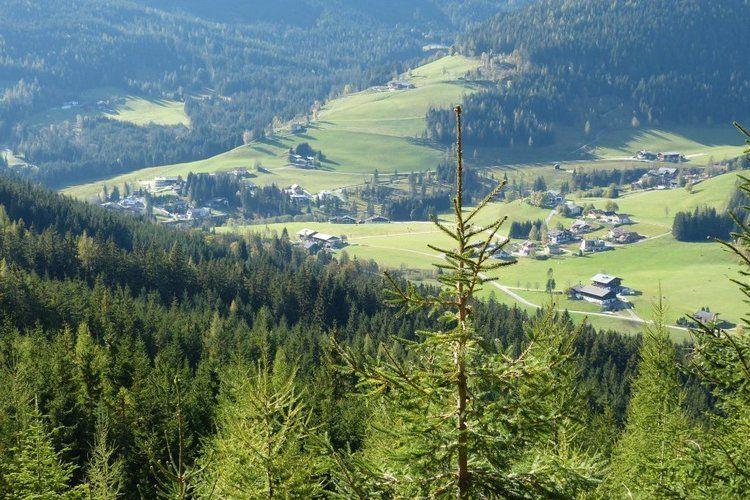 Ferienwohnung Landhaus Elfriede (277298), Filzmoos, Pongau, Salzburg, Österreich, Bild 21
