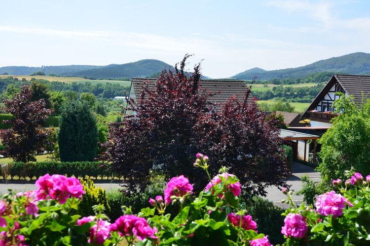 Ferienwohnung Haus Jüttner (255007), Battenberg, Waldecker Land, Hessen, Deutschland, Bild 2