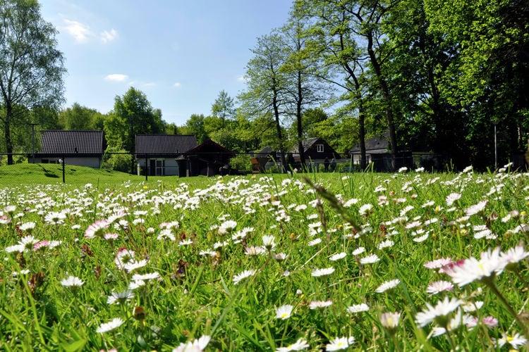 Ferienhaus Het Bosmeer 1 (256998), Noordwolde FR, , , Niederlande, Bild 18