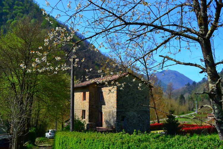 Ferienhaus Paola (256777), Pescaglia, Lucca-Versilia, Toskana, Italien, Bild 4