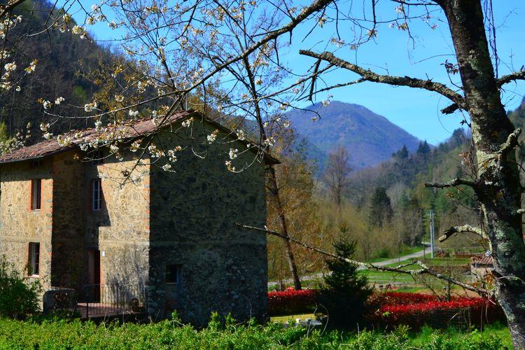 Ferienhaus Paola (256777), Pescaglia, Lucca-Versilia, Toskana, Italien, Bild 25
