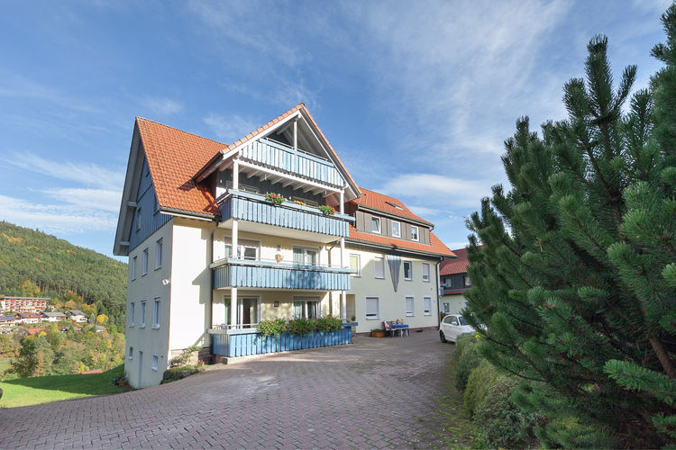 Appartement    Baiersbronn  Rustig gelegen, licht appartement in Baiersbronn met eigen balkon