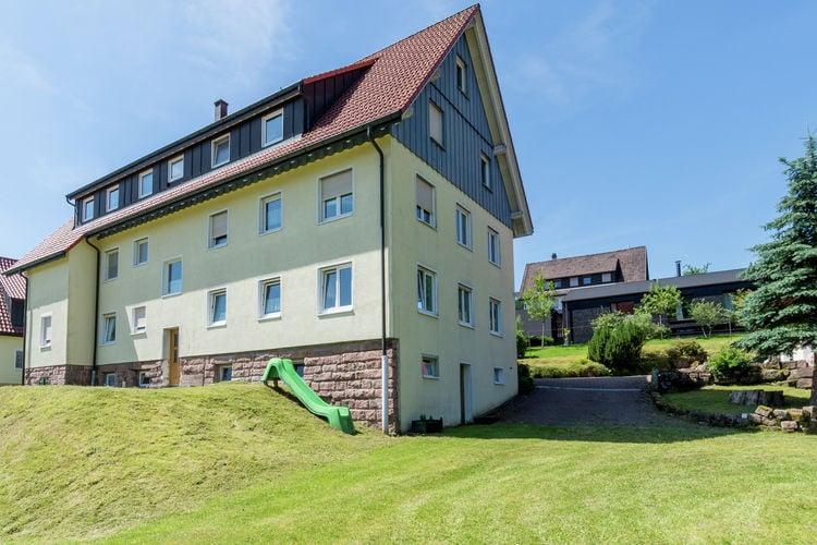 Pojtinger - Apartment - Baiersbronn