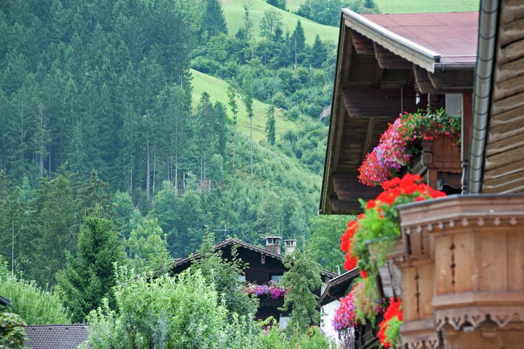 Ferienwohnung Pfister (253774), Kaltenbach, Zillertal, Tirol, Österreich, Bild 26