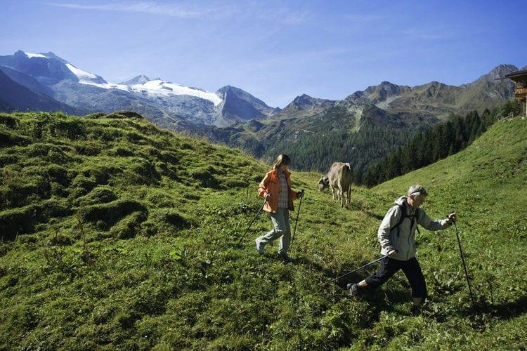 Ferienwohnung Pfister (253774), Kaltenbach, Zillertal, Tirol, Österreich, Bild 37