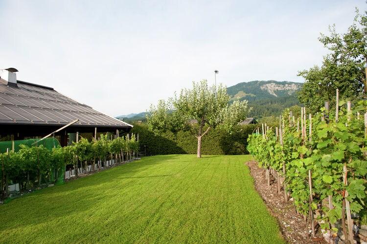Holiday apartment Jaklitsch (253870), St. Johann in Tirol, Kitzbüheler Alpen - St. Johann - Oberndorf, Tyrol, Austria, picture 26