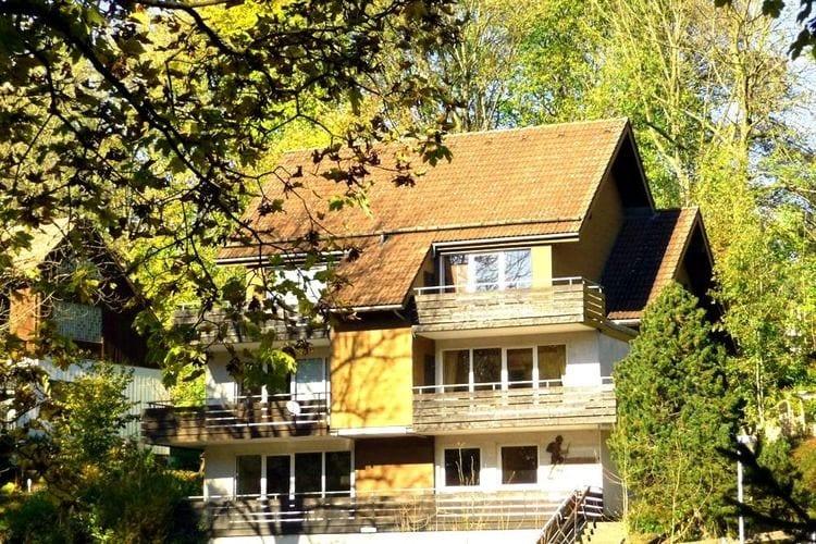 Duitsland | Berlijn | Appartement te huur in St-Andreasberg    2 personen
