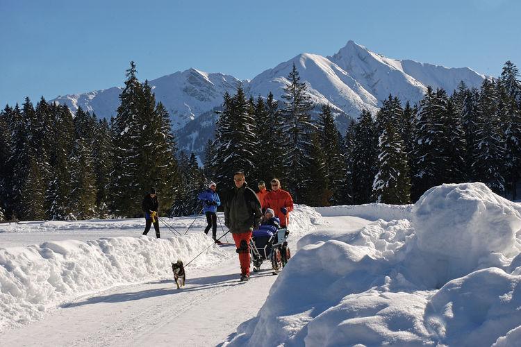 Ferienwohnung Hessenland (253885), Obermieming, Innsbruck, Tirol, Österreich, Bild 33