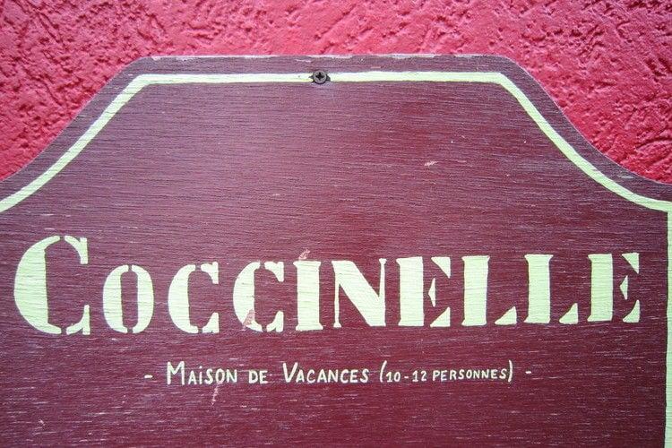 Ferienhaus Coccinelle (65882), Trois-Ponts, Lüttich, Wallonien, Belgien, Bild 4