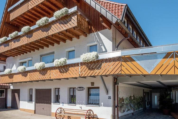 Appartement    Baiersbronn  Groot woning in het noordelijke Zwarte Woud in Baiersbronn met eigen terras
