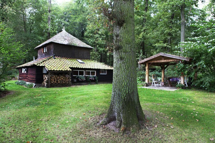 Ferienhaus 'n Heuibarg (256962), Hellendoorn, , Overijssel, Niederlande, Bild 3