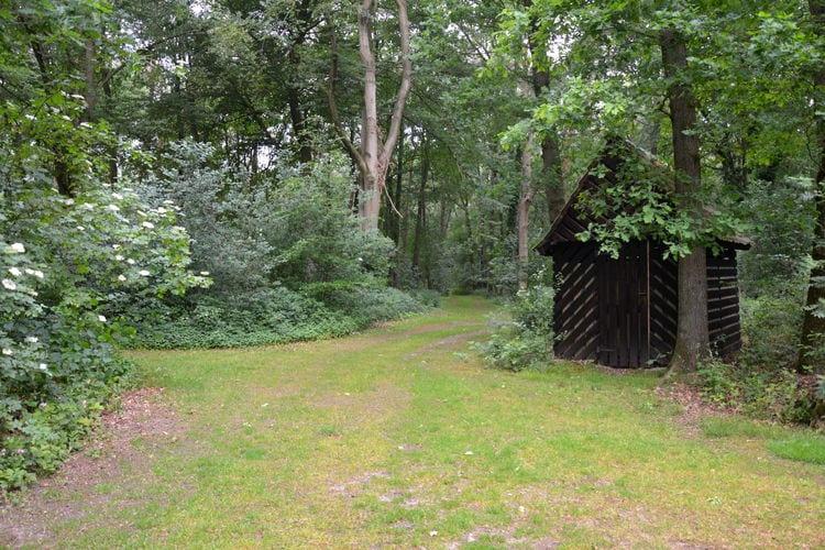 Ferienhaus 'n Heuibarg (256962), Hellendoorn, , Overijssel, Niederlande, Bild 31