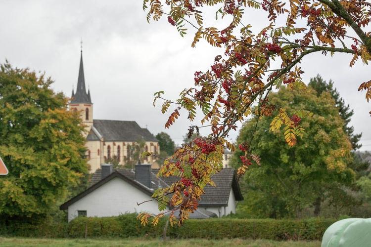 Ferienwohnung Blick zu Luxemburg (255206), Rodershausen, Südeifel, Rheinland-Pfalz, Deutschland, Bild 28