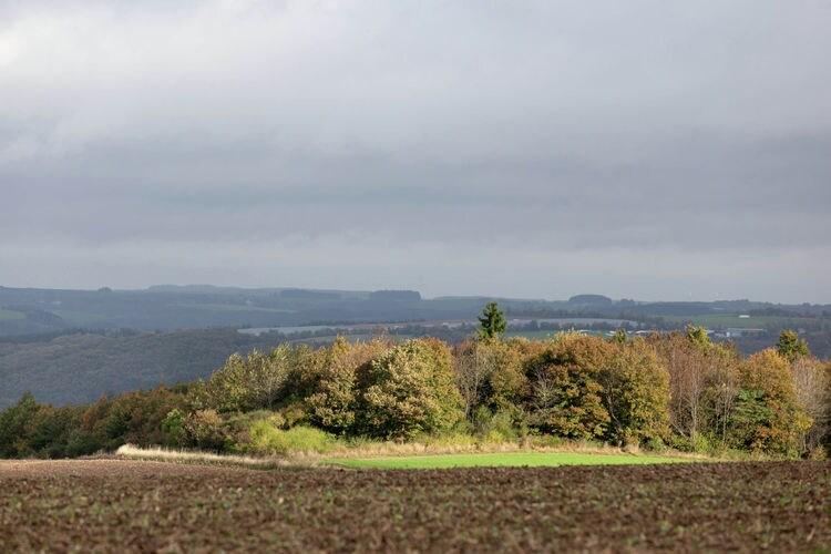 Ferienwohnung Blick zu Luxemburg (255206), Rodershausen, Südeifel, Rheinland-Pfalz, Deutschland, Bild 26