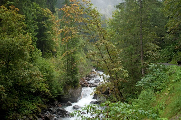 Ferienwohnung Marija (254065), Bartholomäberg, Montafon, Vorarlberg, Österreich, Bild 25