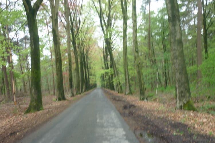 Ferienhaus De Snoeibijl (59343), Kruiskerke, Westflandern, Flandern, Belgien, Bild 31