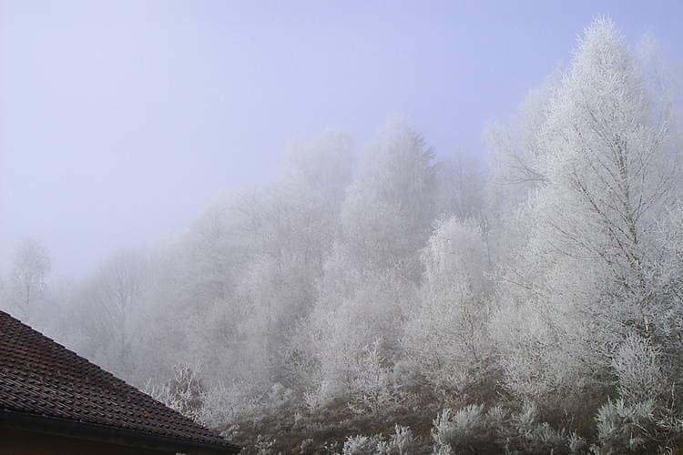 Ferienhaus A l'orée du bois (59129), Le Thillot, Vogesen, Lothringen, Frankreich, Bild 25