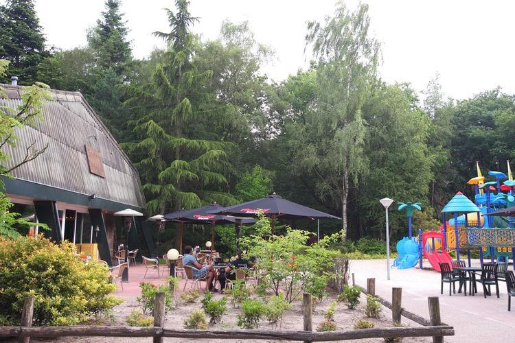 Ferienhaus Bospark de Bikkels 7 (256928), Vlierden, , Nordbrabant, Niederlande, Bild 11