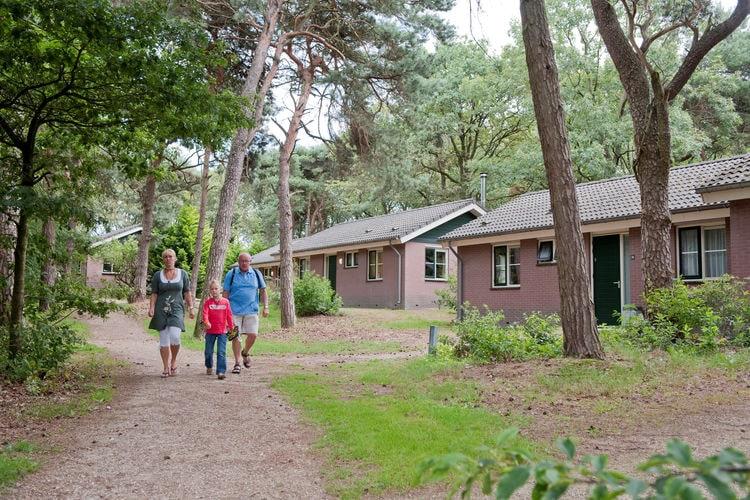 Ferienhaus Bospark de Bikkels 7 (256928), Vlierden, , Nordbrabant, Niederlande, Bild 14