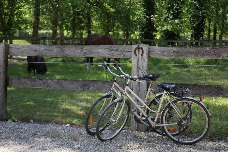 Ferienhaus Gite 1 (58658), Quend, Somme, Picardie, Frankreich, Bild 10