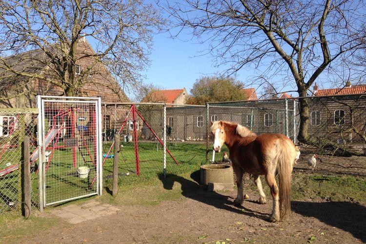 Ferienhaus De Hofstede (59165), Bergen op Zoom, , Nordbrabant, Niederlande, Bild 27