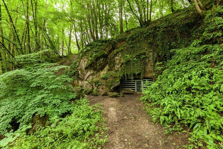 Ferienwohnung Domaine De L'Ecureuil 3 (59638), Bohon, Luxemburg (BE), Wallonien, Belgien, Bild 22