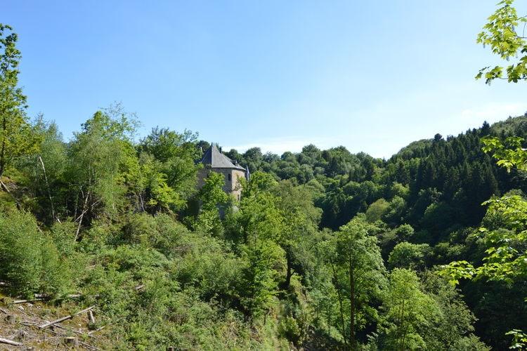 Holiday house Villa Feng Shui (60288), Waimes, Liège, Wallonia, Belgium, picture 34
