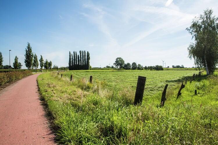 Ferienwohnung 't Sneppel (58841), Loenhout, Antwerpen, Flandern, Belgien, Bild 25