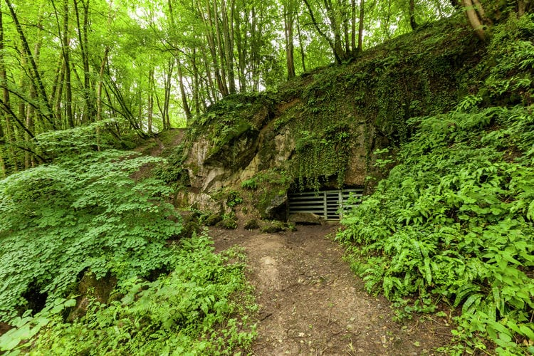 Ferienwohnung Domaine De L'Ecureuil 4 (59641), Bohon, Luxemburg (BE), Wallonien, Belgien, Bild 20