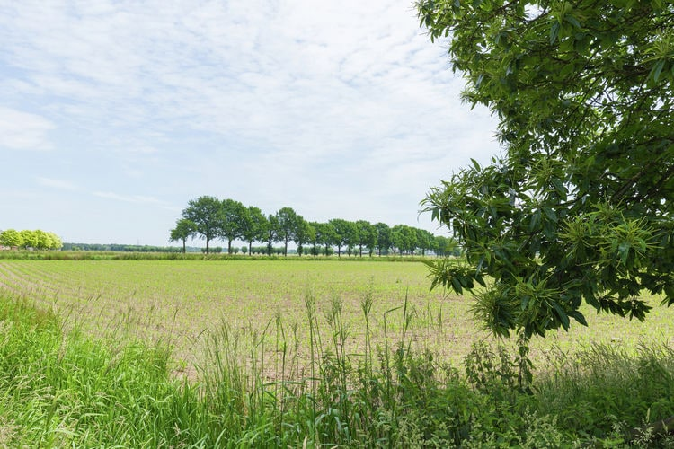 Ferienhaus Hertenbroeksgoed (58888), Braamt, , Gelderland, Niederlande, Bild 32