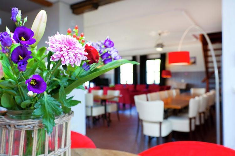 Ferienhaus 't Wooldje (59676), Asten (NL), , Nordbrabant, Niederlande, Bild 9