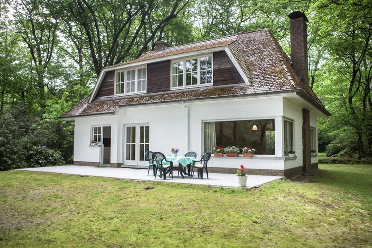 Belgie | Antwerpen | Vakantiehuis te huur in Westmalle    7 personen