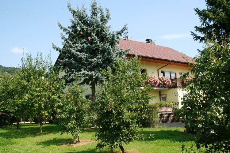 Mooi appartement op de begane grond, met eigen terras, vlak bij de Bodensee