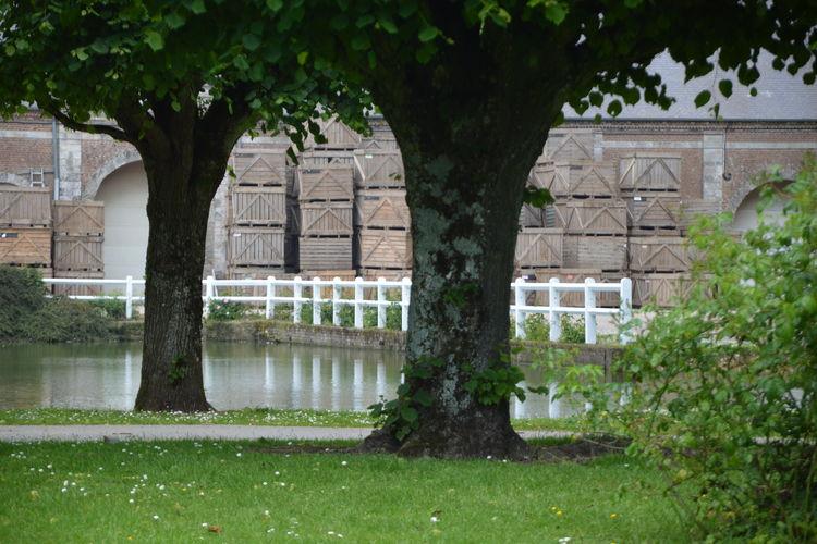 Ferienhaus Abbaye St-André 5 (58652), Campagne lès Hesdin, Pas-de-Calais, Nord-Pas-de-Calais, Frankreich, Bild 34