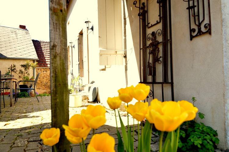 Ferienhaus La Vieille (59125), Dun sur Grandry, Nièvre, Burgund, Frankreich, Bild 20
