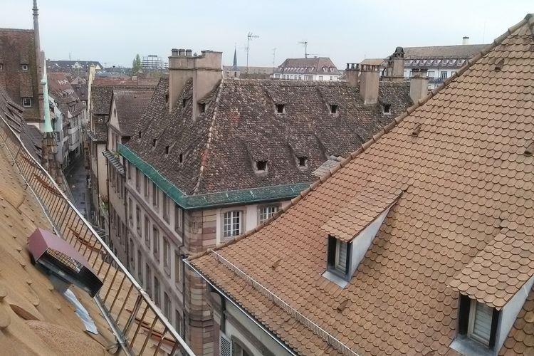 Ferienhaus Au Cheval Blanc (60419), Ruederbach, Oberelsass, Elsass, Frankreich, Bild 38
