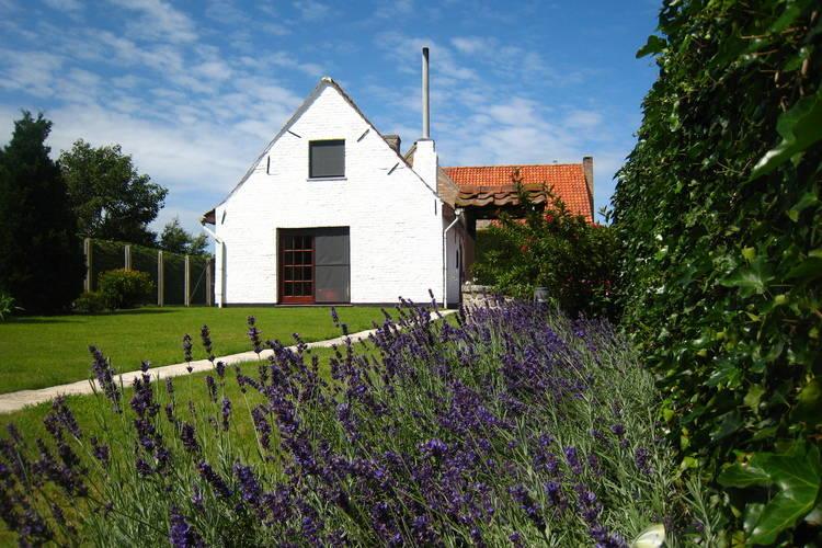 Ferienhaus de Meersen (61389), Beveren-aan-den-Ijzer, Westflandern, Flandern, Belgien, Bild 1
