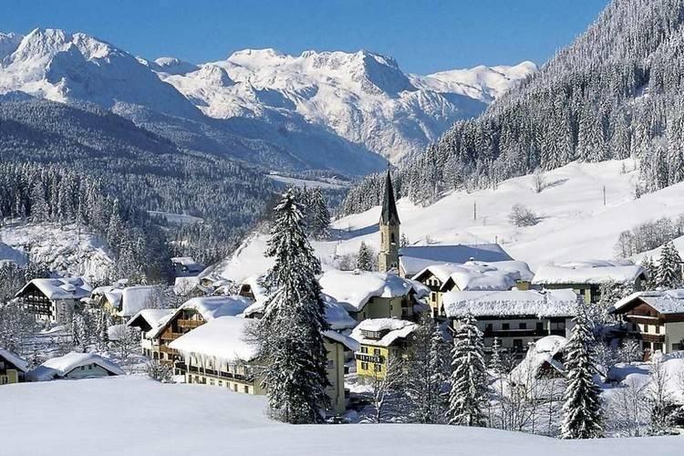 Ferienwohnung Ortner (60735), Rußbach am Paß Gschütt, Tennengau, Salzburg, Österreich, Bild 33