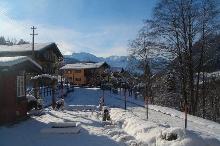 Ferienwohnung Ortner (60735), Rußbach am Paß Gschütt, Tennengau, Salzburg, Österreich, Bild 29