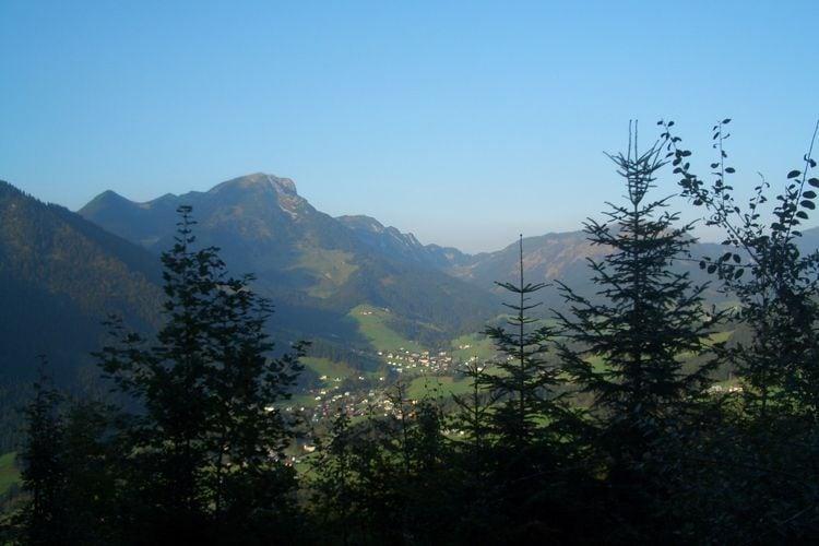 Ferienwohnung Ortner (60735), Rußbach am Paß Gschütt, Tennengau, Salzburg, Österreich, Bild 35