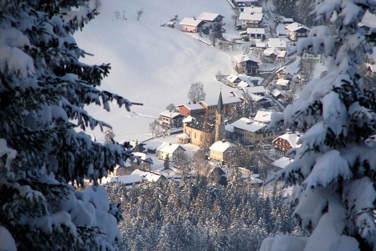 Ferienwohnung Ortner (60735), Rußbach am Paß Gschütt, Tennengau, Salzburg, Österreich, Bild 30
