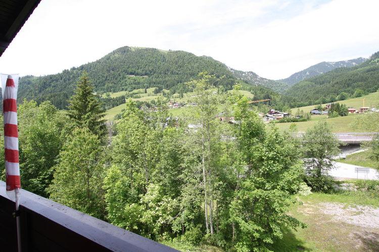 Ferienwohnung Ortner (60735), Rußbach am Paß Gschütt, Tennengau, Salzburg, Österreich, Bild 24