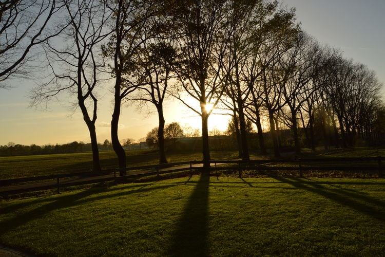 Ferienhaus Vakantieboerderij Gerele Peel (59666), Elsendorp, , Nordbrabant, Niederlande, Bild 30