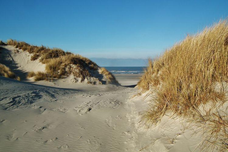 Ferienwohnung Zomerkoninkje (58797), Nes Ameland, Ameland, Friesland (NL), Niederlande, Bild 13