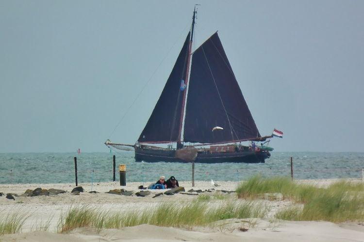 Ferienwohnung Zomerkoninkje (58797), Nes Ameland, Ameland, Friesland (NL), Niederlande, Bild 15